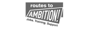 Routes to Ambition